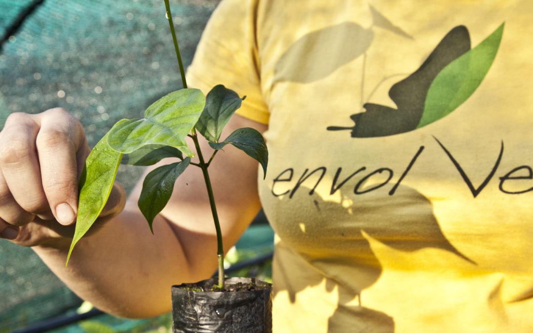 El bosque necesita tu consumo responsable